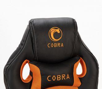 COBRA XR1O (9)